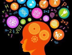 Мозг подростка