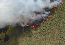 Самый большой пожар в России – Сибирь