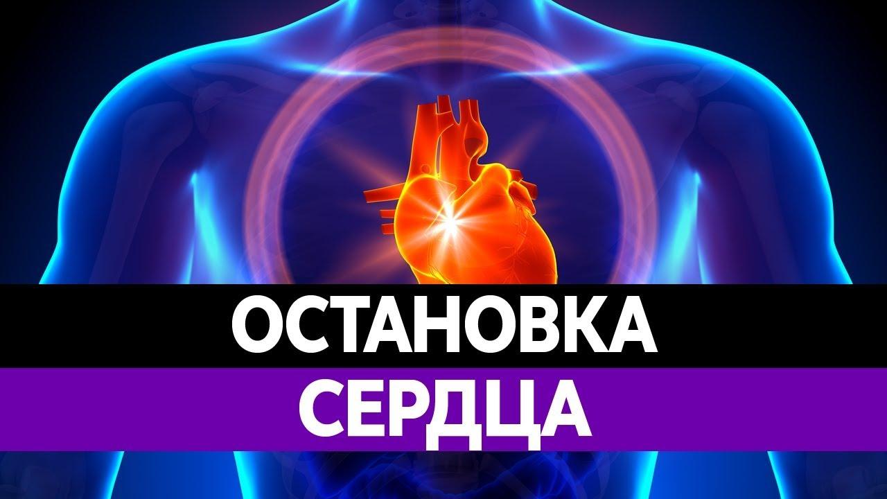 Возможно ли оживить мертвых после полной остановки сердца?