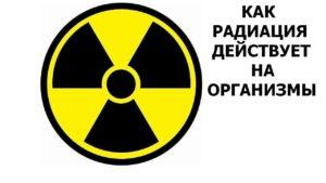 Как радиация действует на организм