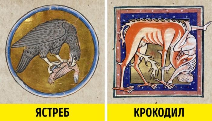 10 неожиданных животных, которых наши предки держали дома 1