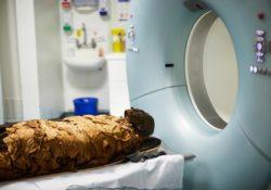 Египетская мумия Несьямуна снова заговорила через 3000 лет