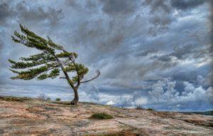 Природа ветра