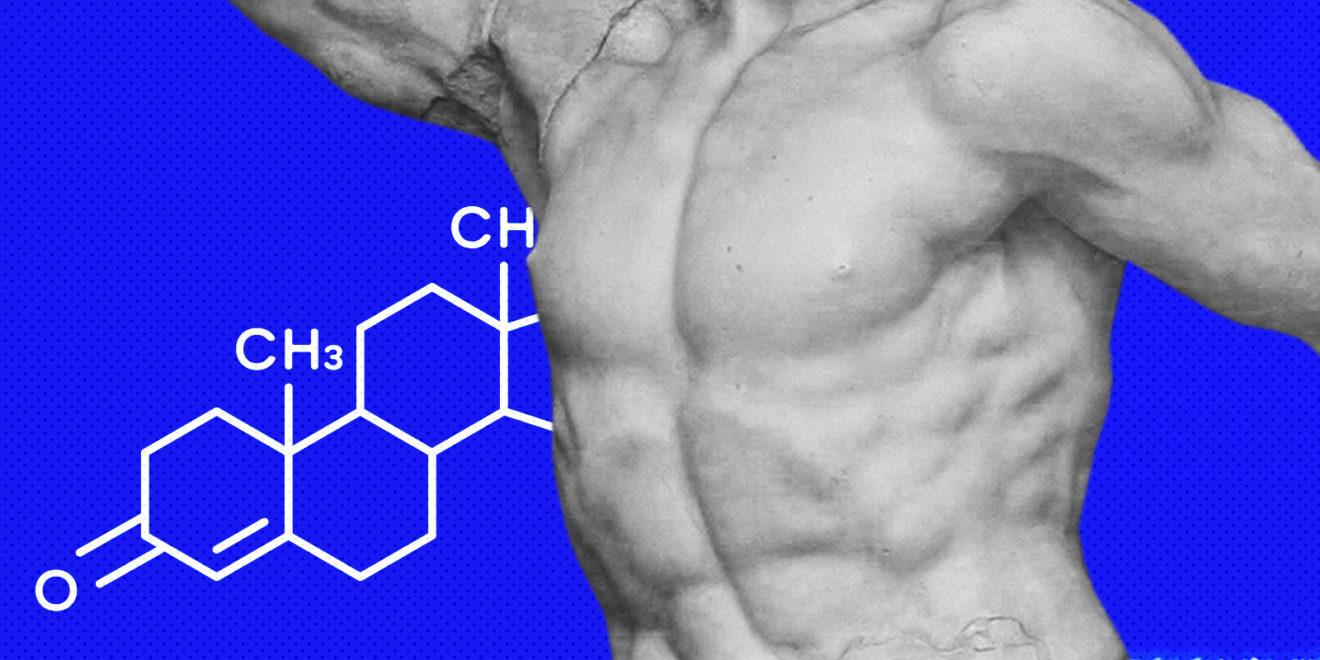 Влияние тестостерона на наш организм. Интересные новости медицины