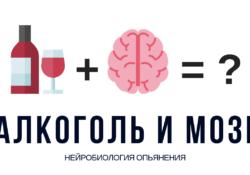 Как происходит опьянение