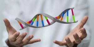 Что ДНК-тест может рассказать о человеке