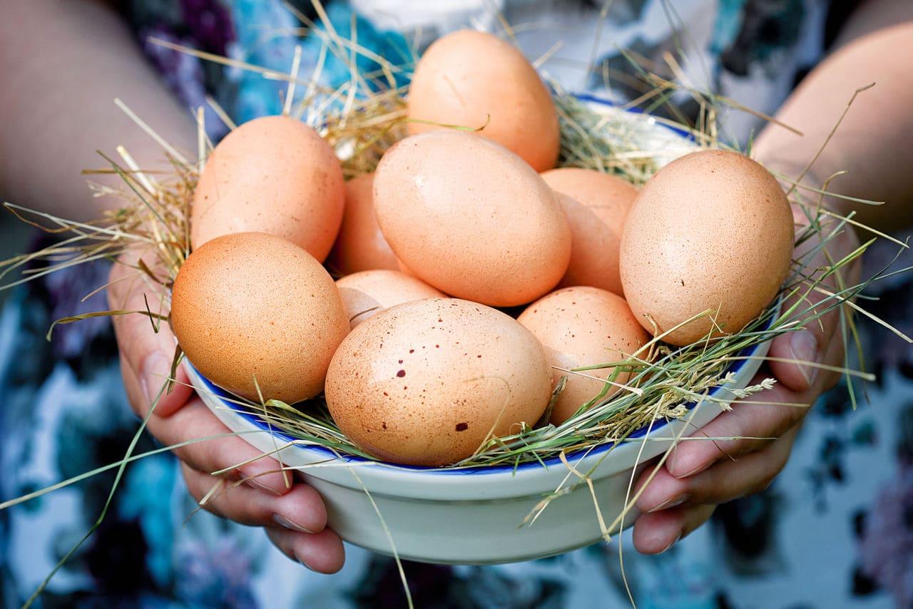 Секреты хранения яиц.