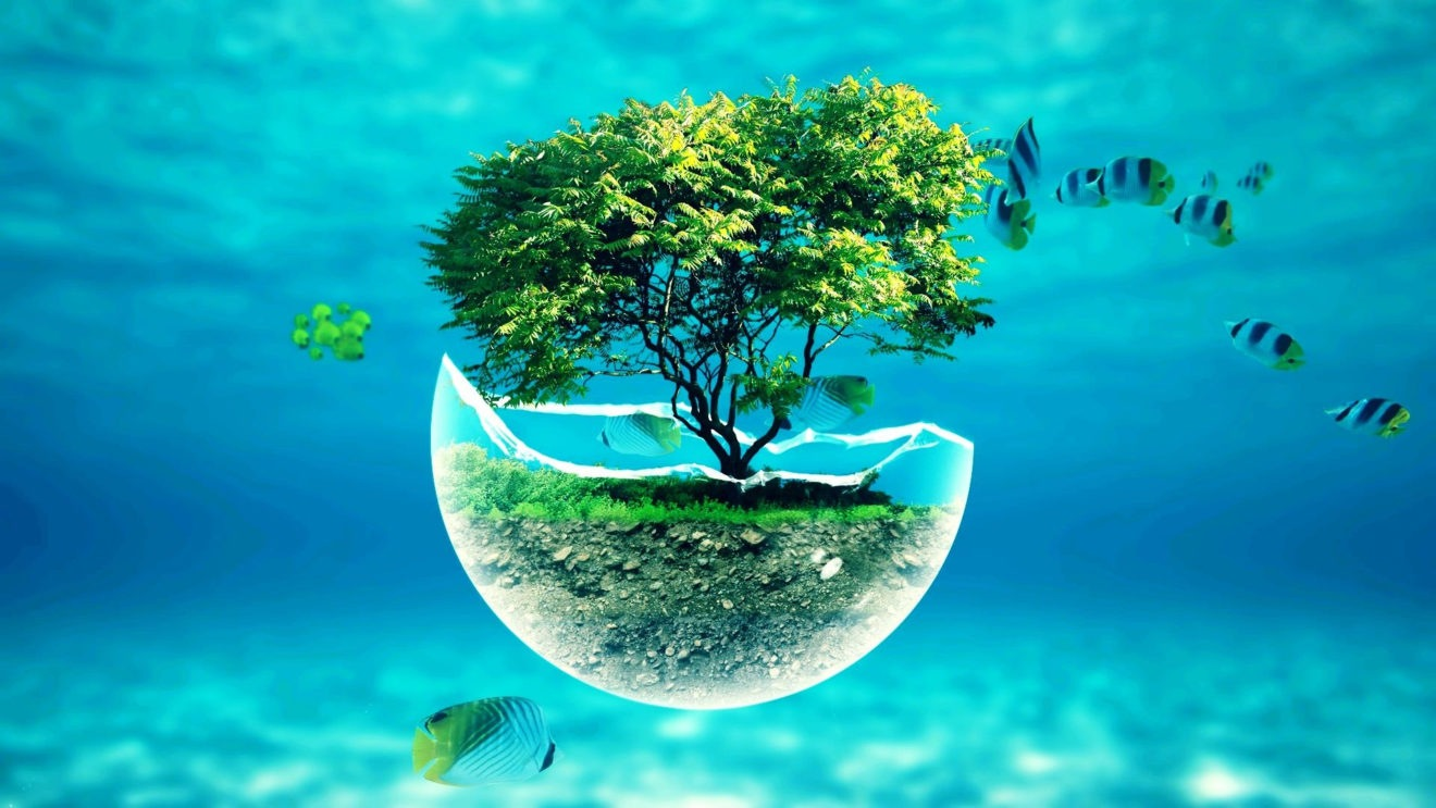 Вода – источник жизни. Пора узнать о фактах, которые еще не всем известны