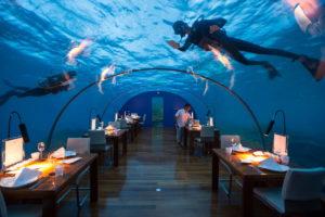 Самые необычные рестораны в мире