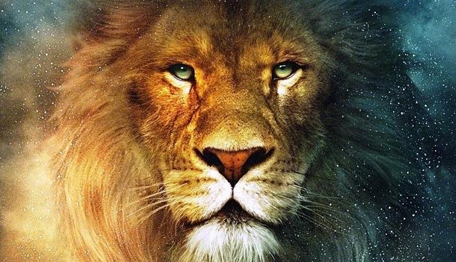 Занятные факты о львах