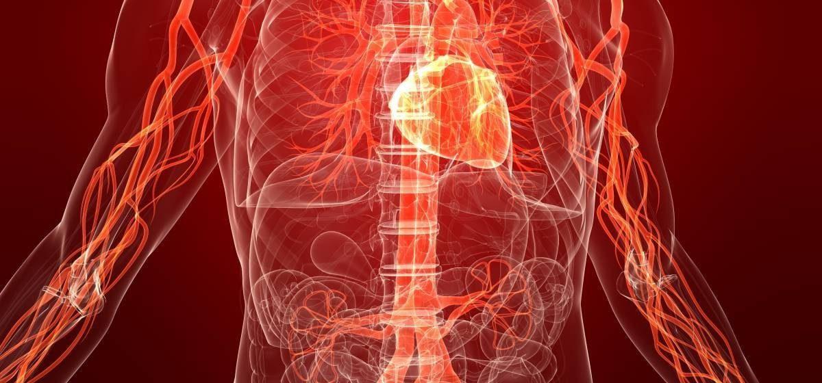 Кардипал – препарат для сердечно-сосудистой системы