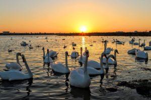 Рейтинг самых красивых мест Крыма